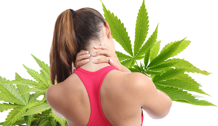 cannabis for muscle soreness