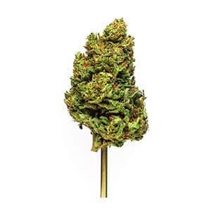 Blue Ridge cbd elecktra strain