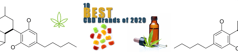 The 10 Best CBD Brands of 2020
