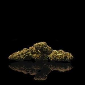 Canna Comforts Lifter Strain Review & Coupon Code